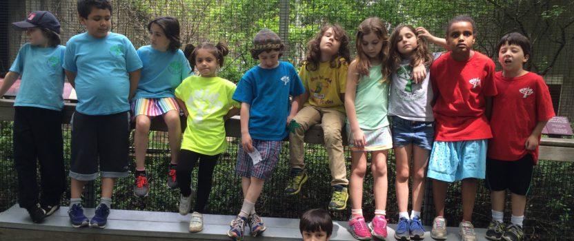 Our Trip to the Ecotarium
